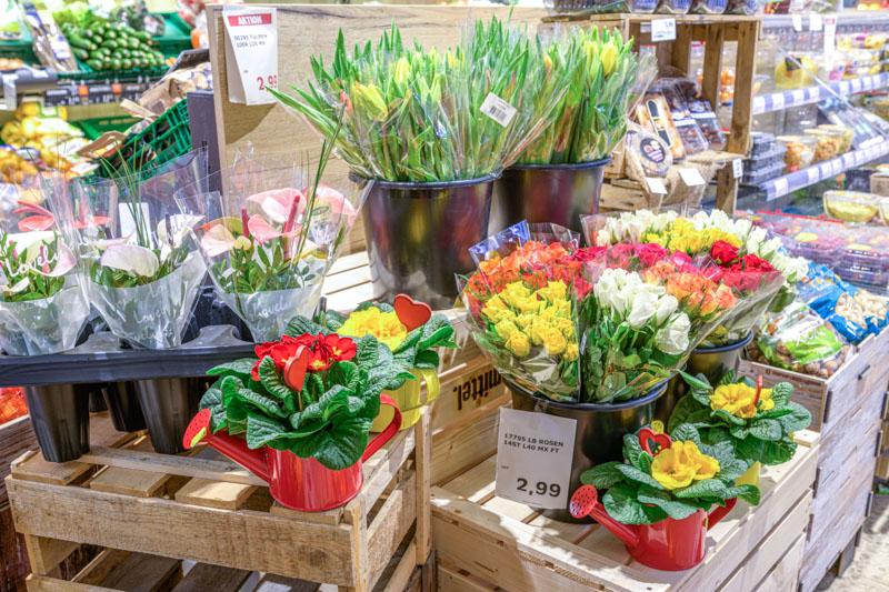Große Auswahl an Blumen – Edeka Decker Oppenau